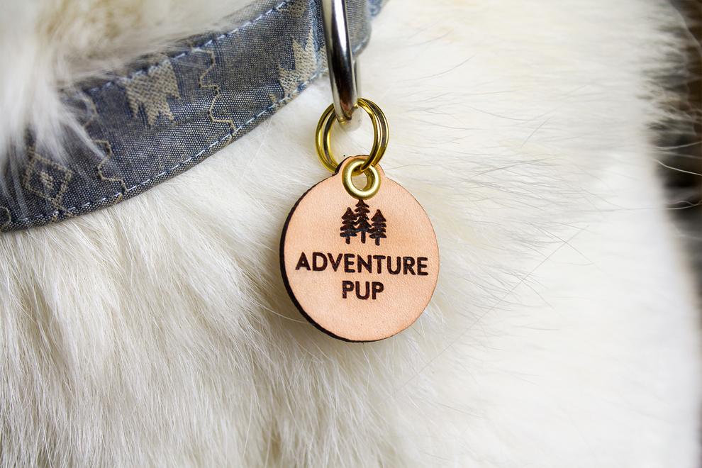 Gtb gift357   adventure pup pet tag   detail main